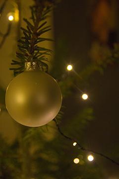 Dunkel, aber trotzdem stimmungsvoll. Wie fotografiere ich meinen Weihnachtsbaum?